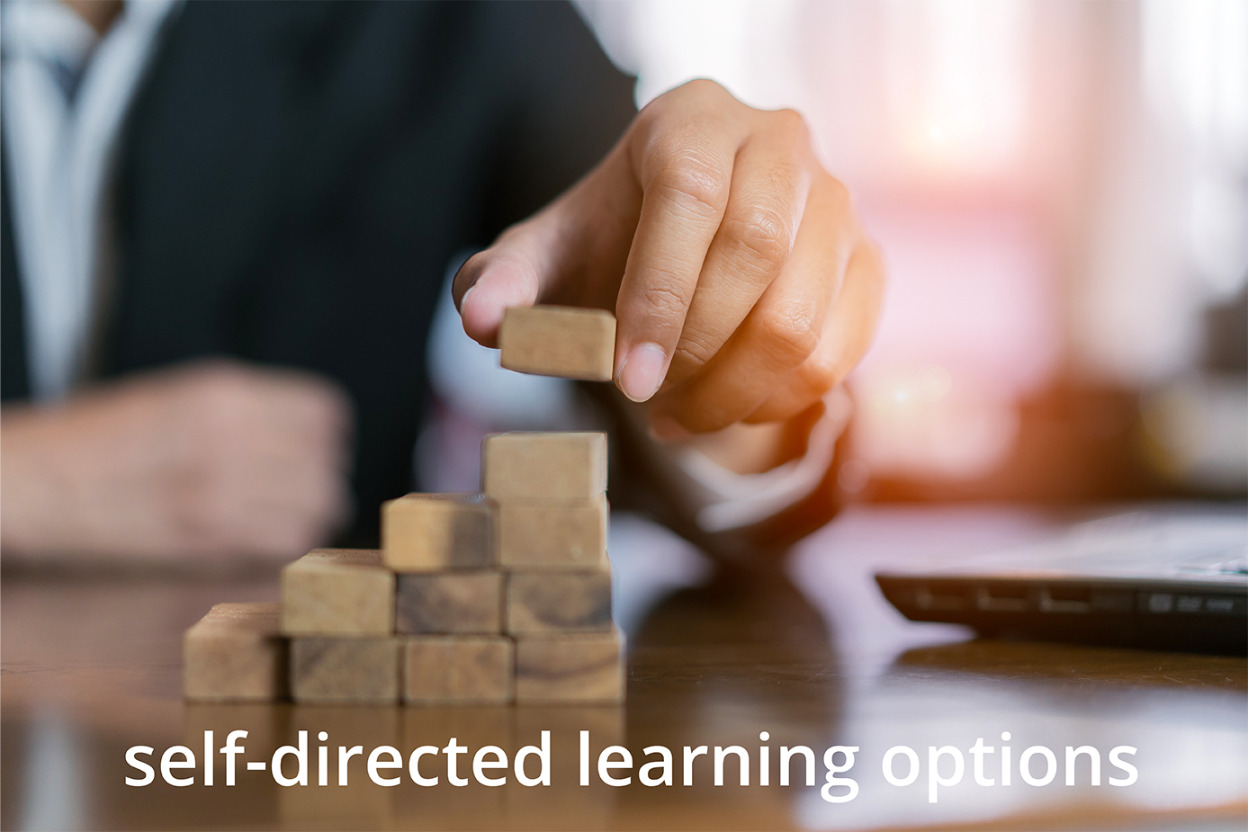 self-directed-learning-options-01